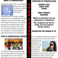 Tuberculosis Fact Sheet (front)